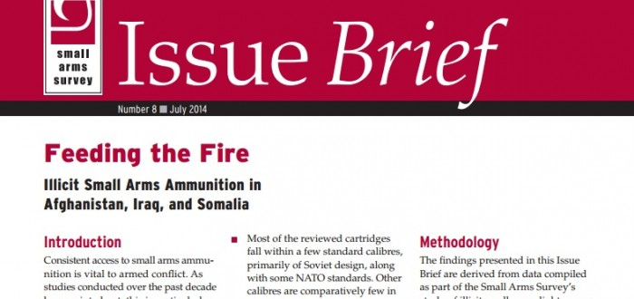 issuebrief8