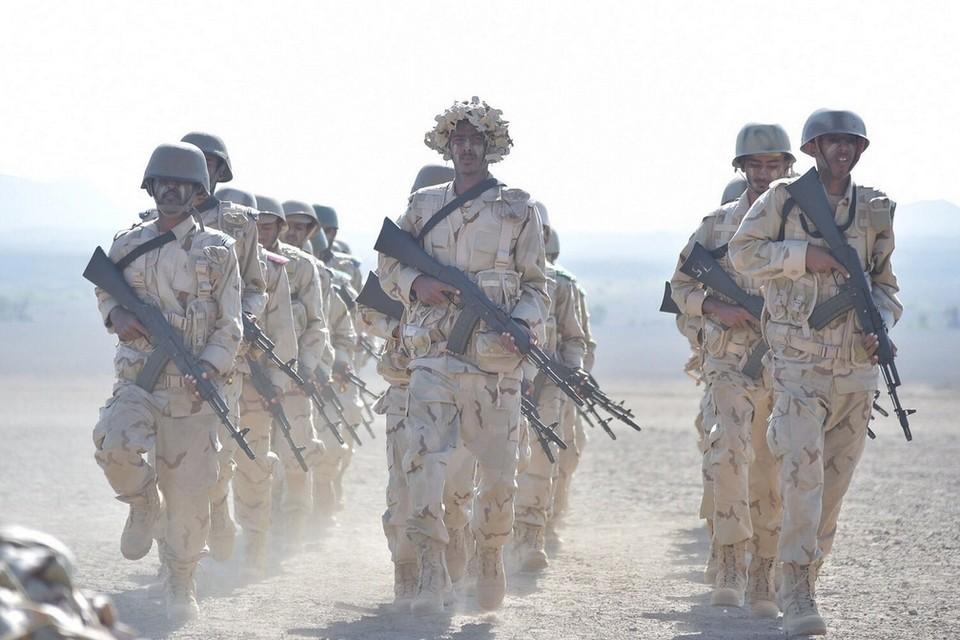 Yemeni forces Nov 2015