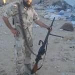 Type73-Syria3